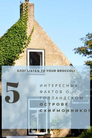 Блог Listen to your broccoli Схирмонниког